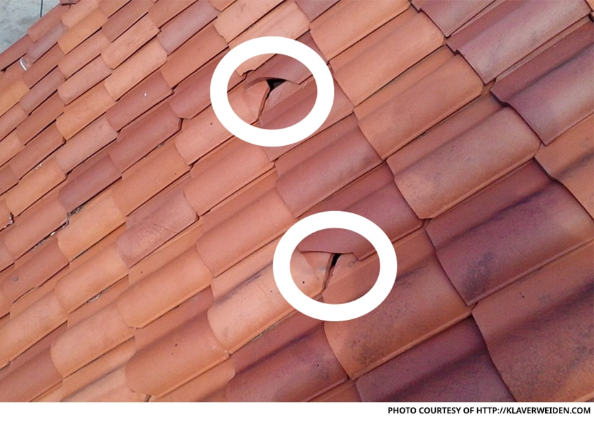 Metal Roofing vs. Spanish Clay Tile: Which Roof Material is Best: Clay Tile Disadvantages