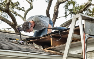 Do You Need New Shingles? Common Problems of Asphalt Shingle Roofing